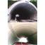 NFKパネル工法協会 技術紹介 製品画像