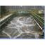 炭素繊維による水質浄化 Mira Carbon(R) 製品画像