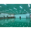 クリーンルーム対応LED照明(IP65 防湿防水防錆) 製品画像