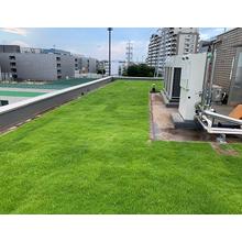 【緑化のメリット】緑化面積を、屋上・折半屋根緑化等で算入 製品画像