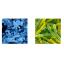微生物剤製造販売サービス 製品画像