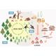 【活用提案】木質バイオマス資源を活用した地産地消エネルギー 製品画像