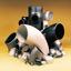 炭素鋼製 突き合わせ溶接式管継手(一般配管用) 製品画像