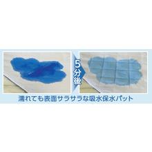使い捨て吸水保水パット 製品画像