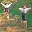 木製遊具 木株とび W-104 製品画像