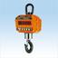 クレーンスケール コスモ- III 5THD レンタル 製品画像
