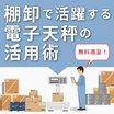 資料『資産管理をスマート化!電子天秤を活用した製造業の棚卸し術』 製品画像