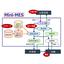製造実行システム『Mini-MES』 製品画像