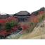 日特建設株式会社 技術紹介『国宝清水寺で崩壊斜面を復旧』 製品画像