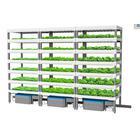 水耕栽培多段棚Msystem 製品画像