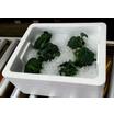 容器・梱包資材 製品画像