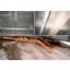 木繊セメント板『モクセンZ/モクセンZ片平板』 製品画像