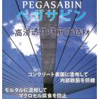 高浸透性鉄筋防錆材『ペガサビン』 ※NETIS登録製品 製品画像