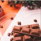 チョコレート製造用 異物除去装置 製品画像