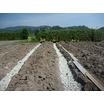 農業資材 スーパーソルL1 製品画像