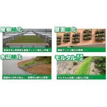 緑化の総合カタログ無料DLプレゼント!薄くて軽い緑化基盤マット 製品画像
