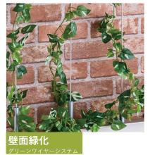 ホテルやオフィスビル等に!『壁面緑化用 ワイヤーシステム』 製品画像