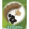 多糖類(増粘剤・乳化安定剤)『タマリンドガム』 製品画像