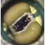 SENSORADE 製品カタログ 製品画像