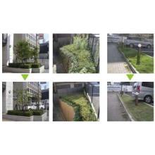 リフォーム・メンテナンス工事『植栽管理保守』 製品画像