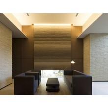 重厚かつ高級感のある空間作りに!『スタッコフレックス 塗り版築』 製品画像