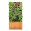 壁面緑化『ミドリエ』 製品画像