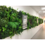 【⾃由な植栽デザインを実現】『ぴたっとグリーン』 製品画像