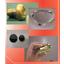 『機能性薄膜の受託加工サービス』 製品画像