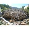 土石流・土木流下防止緊急対策工(強靭ワイヤーネット) 製品画像