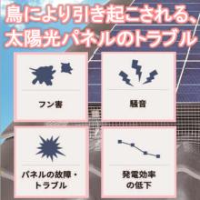 【事例紹介】鳥により引き起こされる、太陽光パネルのトラブルとは… 製品画像