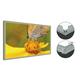 LEDライトパネル 製品画像