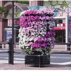 立体花畑『フラワーメリーゴーランド』  製品画像