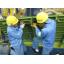 株式会社ヒューマン・リソース・ジャパン・ホールディングス事業紹介 製品画像