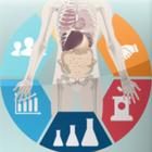ヒト試験の活用事例のご紹介【トクホ・機能性表示食品向け】 製品画像