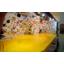 自作ボルダリングマット・自宅クライミング用マット※床に置くマット 製品画像