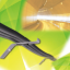 トンネル用ケーブル支持金具『Mブラケット』 製品画像