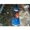 【藻・スケール事例】水質浄化装置『メカセラ装置』 製品画像