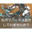 『株式会社三洲ワイヤーハーネス 施工事例集』 製品画像