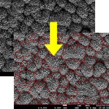 【導入事例】ZnO薄膜ダブルテクスチャ 表面形状の定量化 製品画像