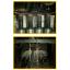 金属熱処理受託加工サービス 製品画像