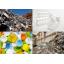 需要が高まるリサイクル現場での選別 製品画像
