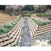 木製土木用ブロック『ウッドブロック』 製品画像
