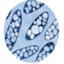 生分解性樹脂PHBVのパウダー『Naturematte 31』 製品画像