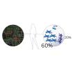 腸内環境評価手法『メタボロゲノミクス(R)』 製品画像