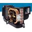 補機駆動形マリンエアコン パッケージタイプ『DTU』 製品画像