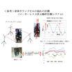 コンサルティング(人間工学)事例:その3 ランドセルの評価結果 製品画像