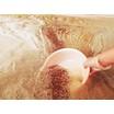 レジオネラ対策に配管洗浄が必要な理由 製品画像