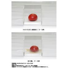 zonoA森林イオン漆喰~マイナスイオンの効果~ 製品画像