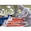 【有名回転ずし卸業への導入事例】サーモンフィーレの真空パック 製品画像