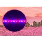 【花、果物用】植物育成LED照明『EZYGRO赤・青・遠赤』 製品画像